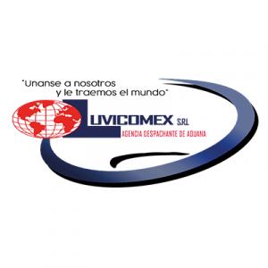 cropped-LOGO-LUVICOMEX-JPG