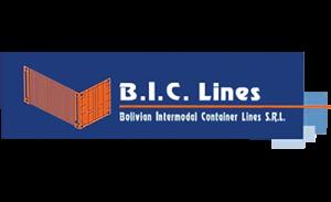 logo-bic-line